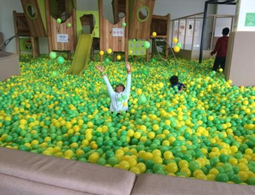 Online Exhibition and a Kiddomo Celebration! Sprint 2 Week 6